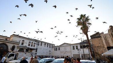 Photo of ست إصابات جديدة بالكورونا في سوريا والحكومة تقرر عزل منطقة السيدة زينب قرب دمشق