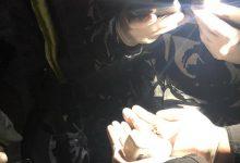 Photo of ضبط سيارة بداخلها مخدرات على طريق عام بعلبك (صور)