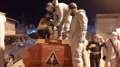 Photo of الدفاع المدني في عين الحلوة يتجهز لمواجهة زحف الحشرات