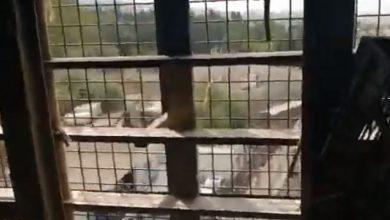 """صورة بالفيديو: إستنفارٌ في سجن رومية بإنتظار """"ساعة الصفر"""""""