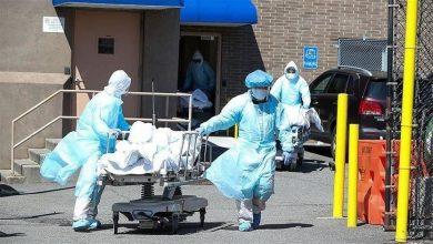صورة المراكز الأميركية: وفيات كورونا في الولايات المتحدة بلغت ٣٩٥٠٠٠ و ٢٤ مليون اصابة